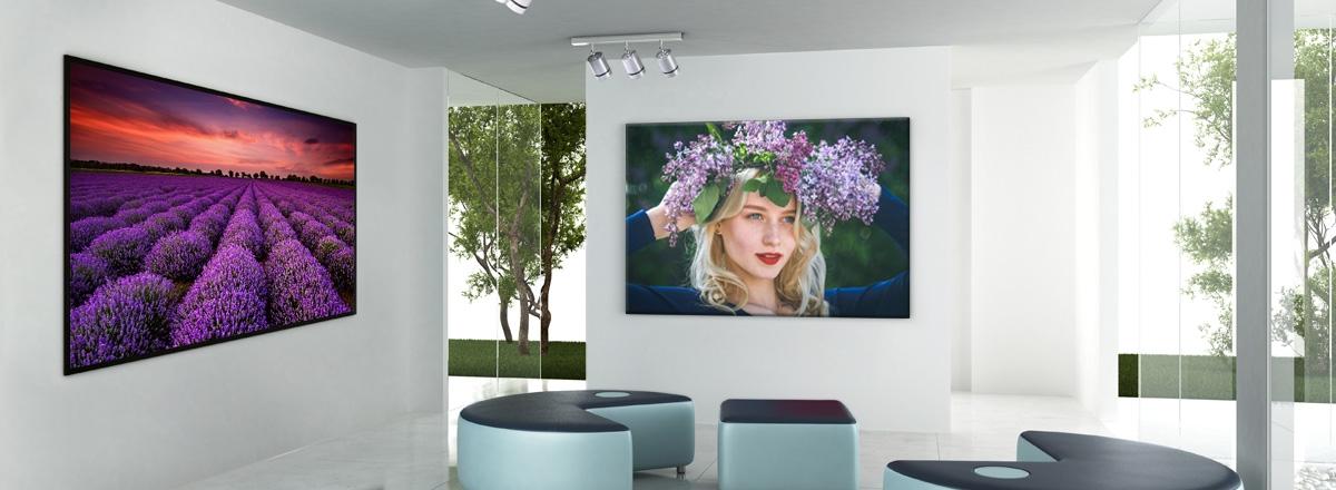 Photos murales Alu-Acrylique